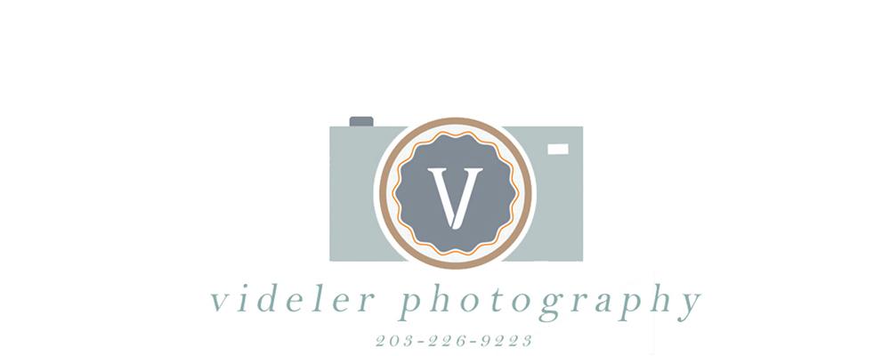 videler.com/blog logo